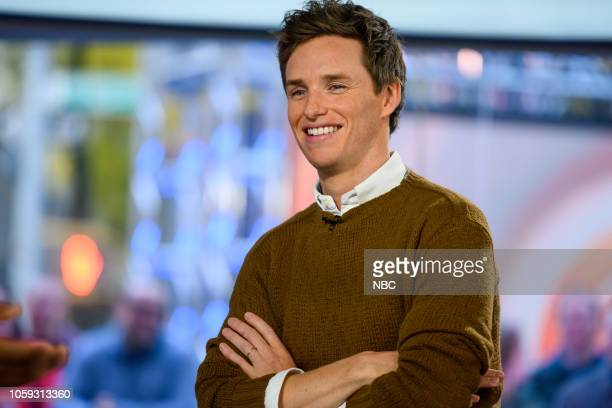 Eddie Redmayne on Wednesday November 7 2018
