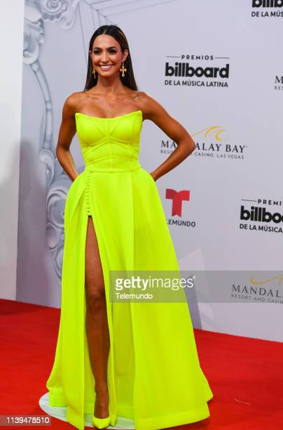 Erika Csiszer on the red carpet at the Mandalay Bay Resort and Casino in Las Vegas NV on April 25 2019