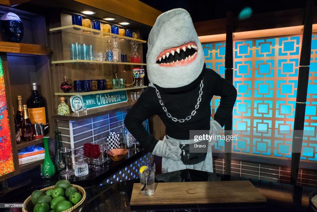 Gay Shark --