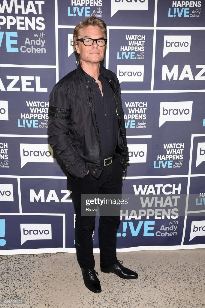 Harry Hamlin --