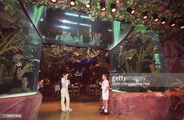 Pictured here is the Rainforest Cafe at the Festival Walk shopping mall in Kowloon Tong 03 September 2002