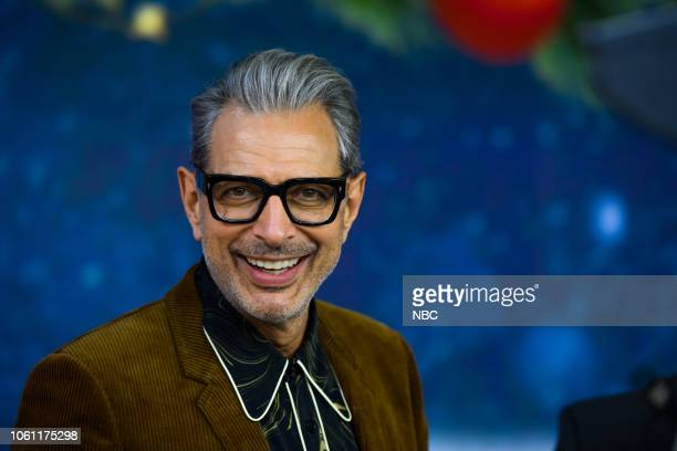 Jeff Goldblum on Monday, November 12, 2018 --