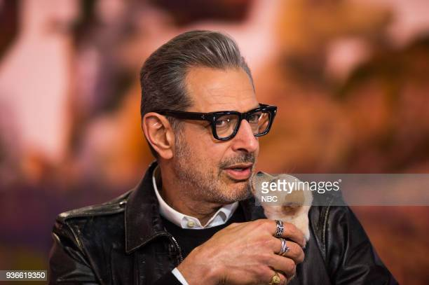 Jeff Goldblum on Wednesday March 21 2018