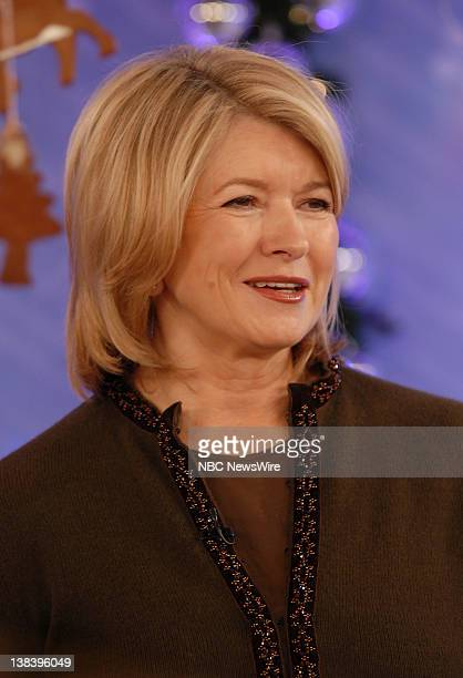 Martha Stewart on NBC News' Today on November 18 2007