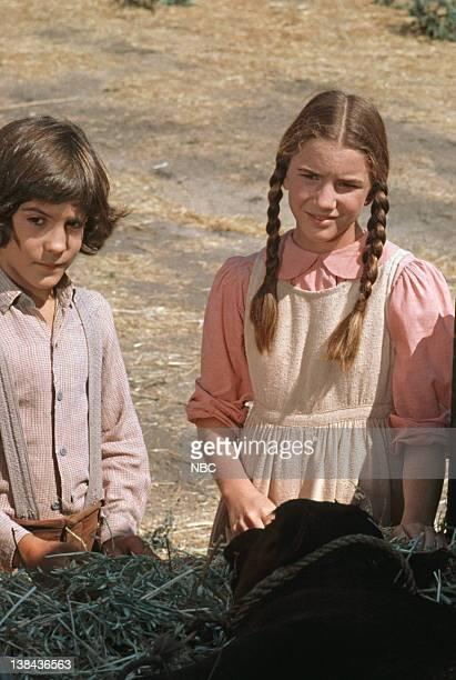 Matthew Laborteaux as Albert Quinn Ingalls Melissa Sue Anderson as Mary Ingalls