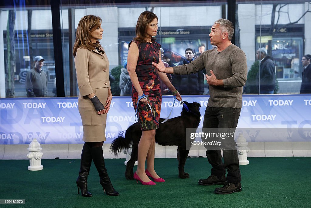 Natalie Morales, Savannah Guthrie and Cesar Millan appear on NBC News' 'Today' show --