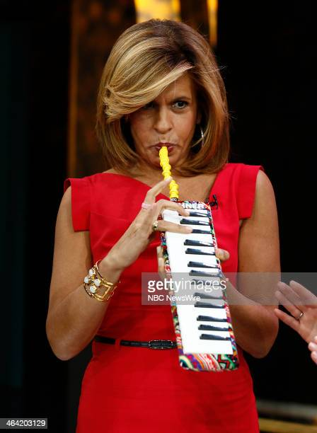 NBC News' Hoda Kotb appears on NBC News' 'Today' show on January 21 2014