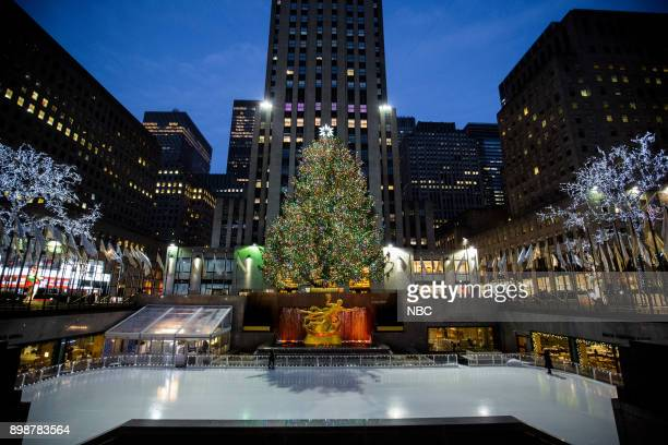 Rockefeller Plaza Christmas Tree on Tuesday Tuesday 26 2017