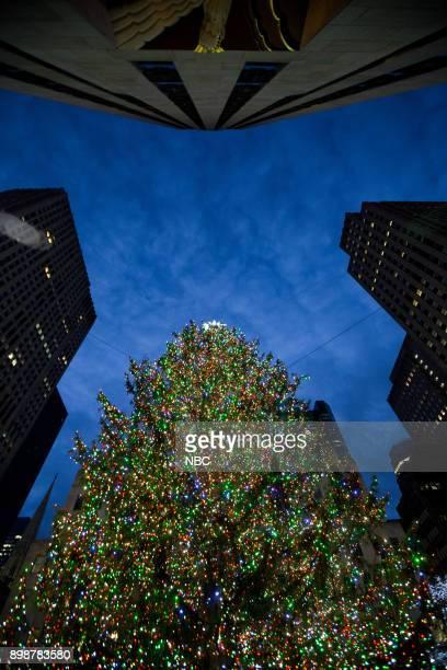 Rockefeller Plaza Christmas Tree on Tuesday Tuesday 26 2017