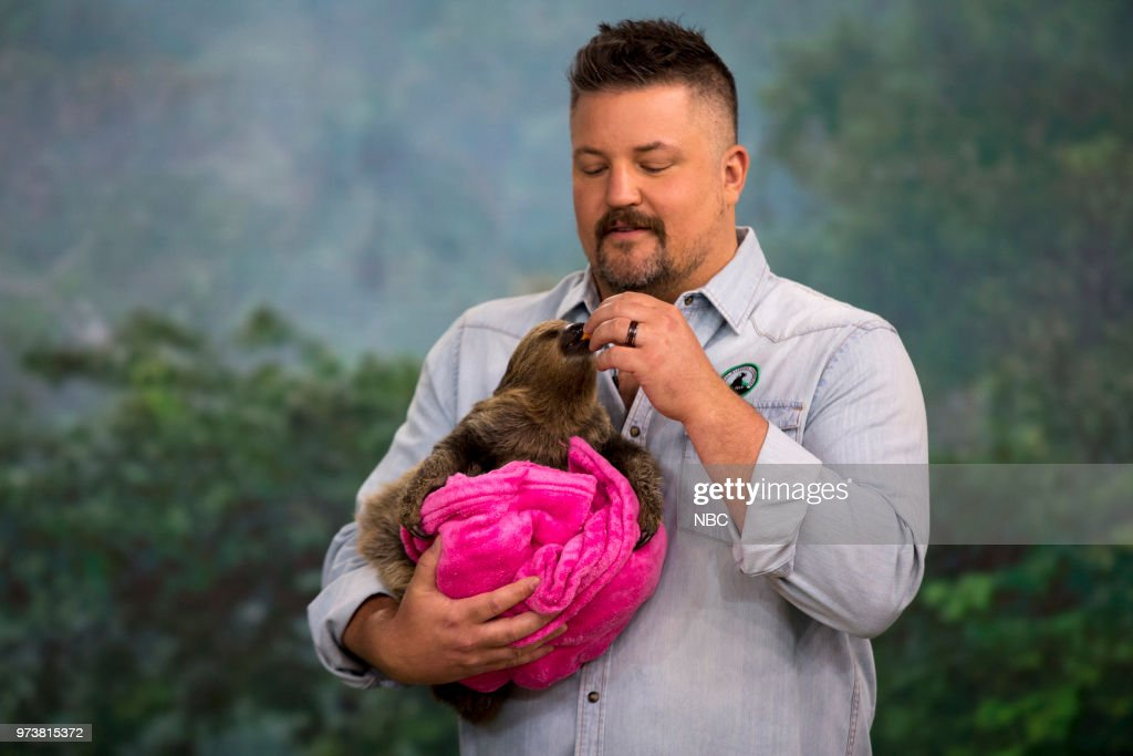 Two-toed sloth and David Mizejewski on Wednesday June 13, 2018 --