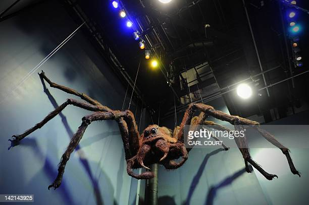 A pictures shows Aragog the giant spider displayed during a preview of the Warner Bros Harry Potter studio tour 'The Making of Harry Potter' in north...