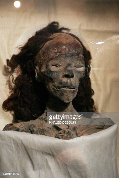 A pictures shows the mummy of Queen Tiye Tutankhamun's grandmother at the Egyptian museum in Cairo on February 17 2010 New research has revealed that...