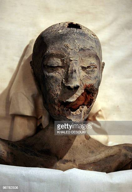A pictures shows the mummy of Tutankhamun�s mother at the Egyptian museum in Cairo on February 17 2010 New research has revealed that the boy king...