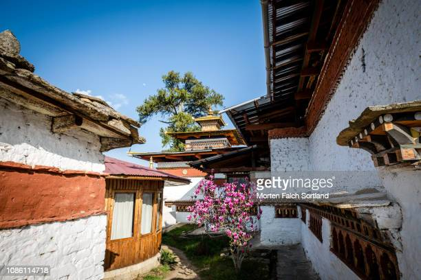 picturesque  kyichu lhakhang temple, bhutan springtime - paro district stock pictures, royalty-free photos & images