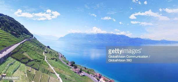 picturesque lavaux vineyard terraces - marthas vineyard stock pictures, royalty-free photos & images