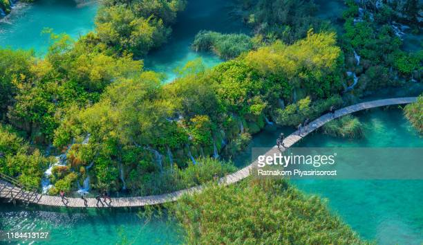 picturesque morning in plitvice national park. colorful spring scene of green forest with pure water lake. great countryside view of croatia, europe. beauty of nature concept background - エメラルドグリーン ストックフォトと画像