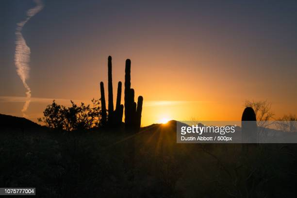 picturing arizona - dustin abbott stock pictures, royalty-free photos & images