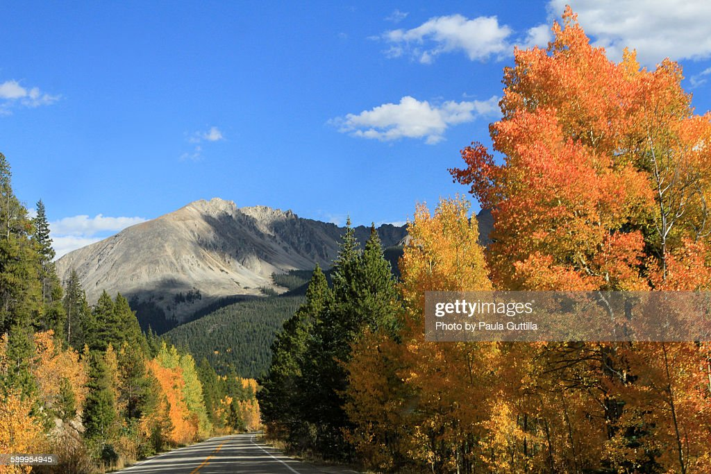 Picturing Autumn : Stock Photo