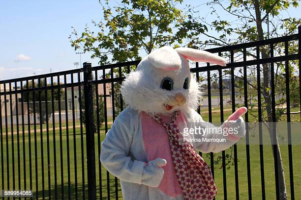 picturing spring - easter bunny costume stock pictures, royalty-free photos & images