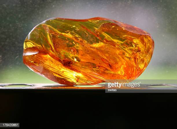 Piece of amber