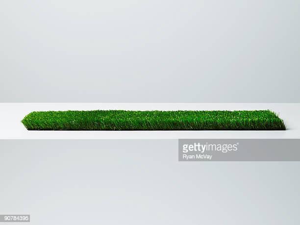 Piece of fake grass.