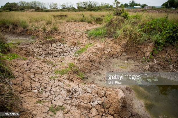 A piece of land dries out due to the lack of fresh unsalinizated water on April 29 2017 in Bao Thuan Village Ba Tri District Ben Tre Province Vietnam...