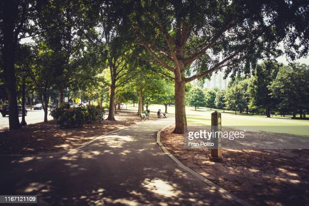 piedmont park in atlanta, georgia. - natural parkland stock pictures, royalty-free photos & images