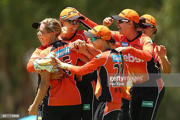 Piepa Cleary and Katherine Brunt of the Scorchers celebrate the wicket of Meg Lanning of the Stars during the Women's Big Bash League match between...