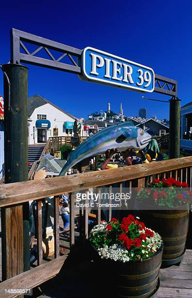 pier 39 in san francisco. - fishermans wharf stock pictures, royalty-free photos & images