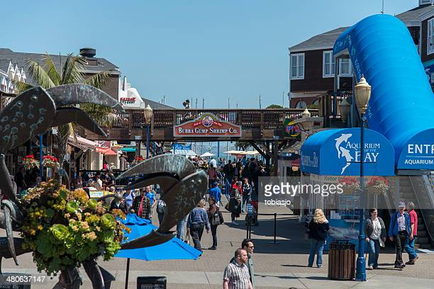 pier 39 - fishermans wharf stock pictures, royalty-free photos & images