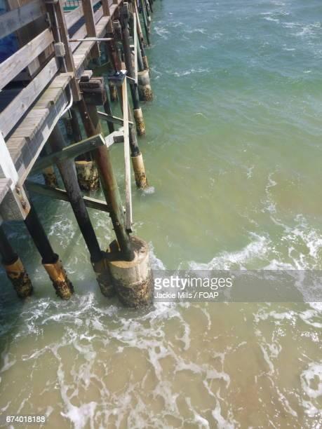 Pier at Daytona Beach