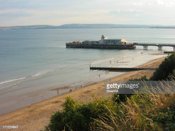 Pier, Beach and Cliff Top