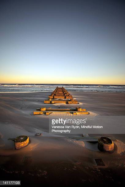 pier on beach - vanessa van ryzin stockfoto's en -beelden