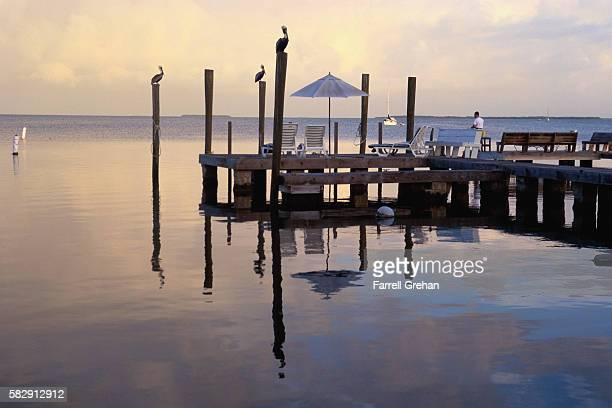 Pier on Key Largo