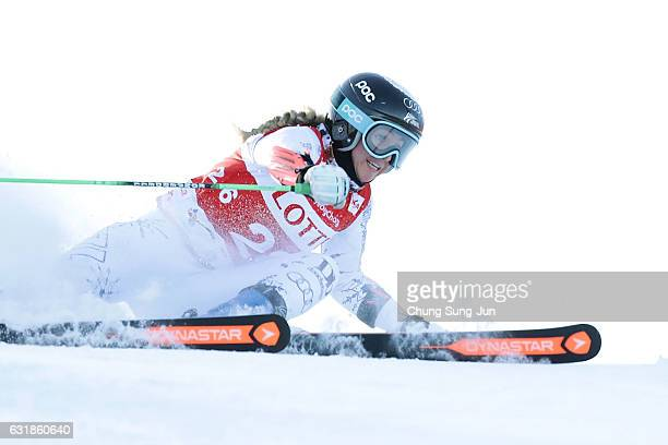 Piera Hudson of New Zealand competes in the Ladies's Giant Slalom during the Alpine FEC And President Cup 2017 test event for Pyeongchang 2018...