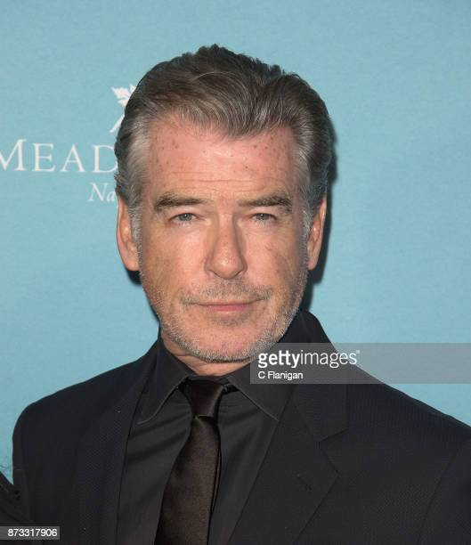 Pierce Brosnan attends the Red Carpet Festival Gala at CIA Copia during the 7th Annual Napa Valley Film Festival on November 11 2017 in Napa...