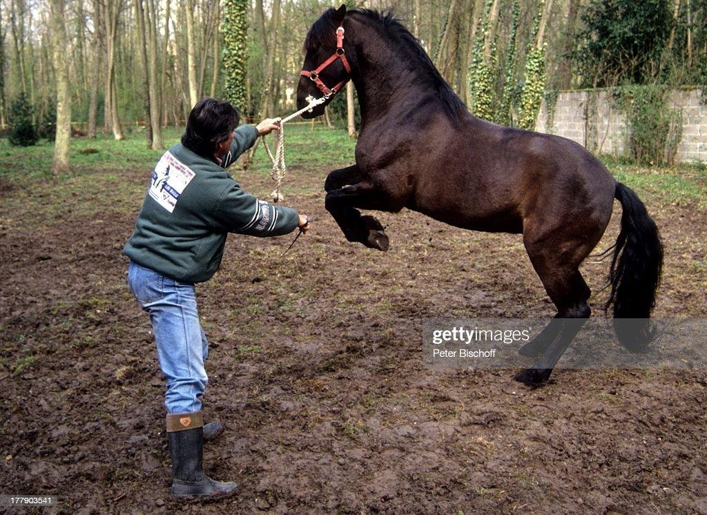 Story mit pferd Der leckende