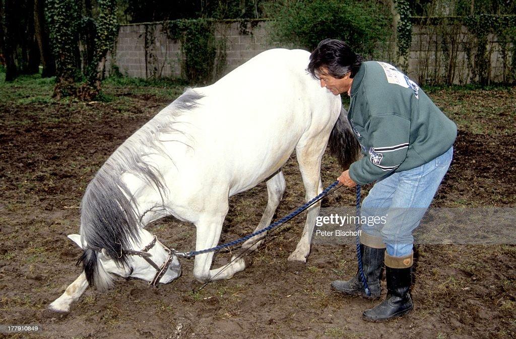Pferd story mit Storing medical