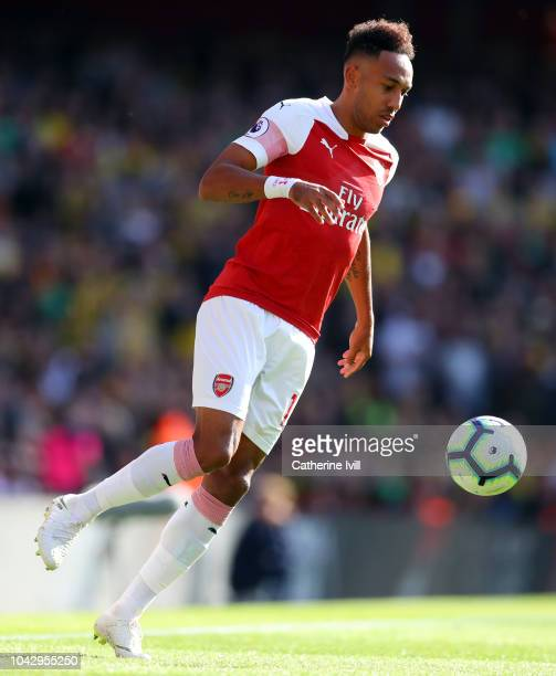 PierreEmerick Aubameyang of Arsenal during the Premier League match between Arsenal FC and Watford FC at Emirates Stadium on September 29 2018 in...