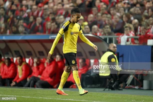 PierreEmerick Aubameyang of Borussia Dortmundduring the UEFA Champions League round of 16 match between SL Benfica and Borussia Dortmund on February...