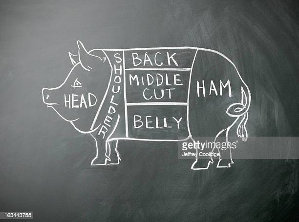 Pig Butcher Diagram Stock Photo Getty Images