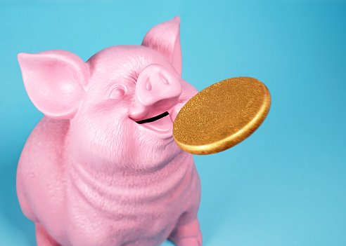 Pig Coin Bank Catching Gold Coin - gettyimageskorea