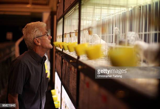 Pigeon fanciers peruse the entries as they gather for The British Homing World Show of the year at The Winter Gardens on January 16 2010 in Blackpool...