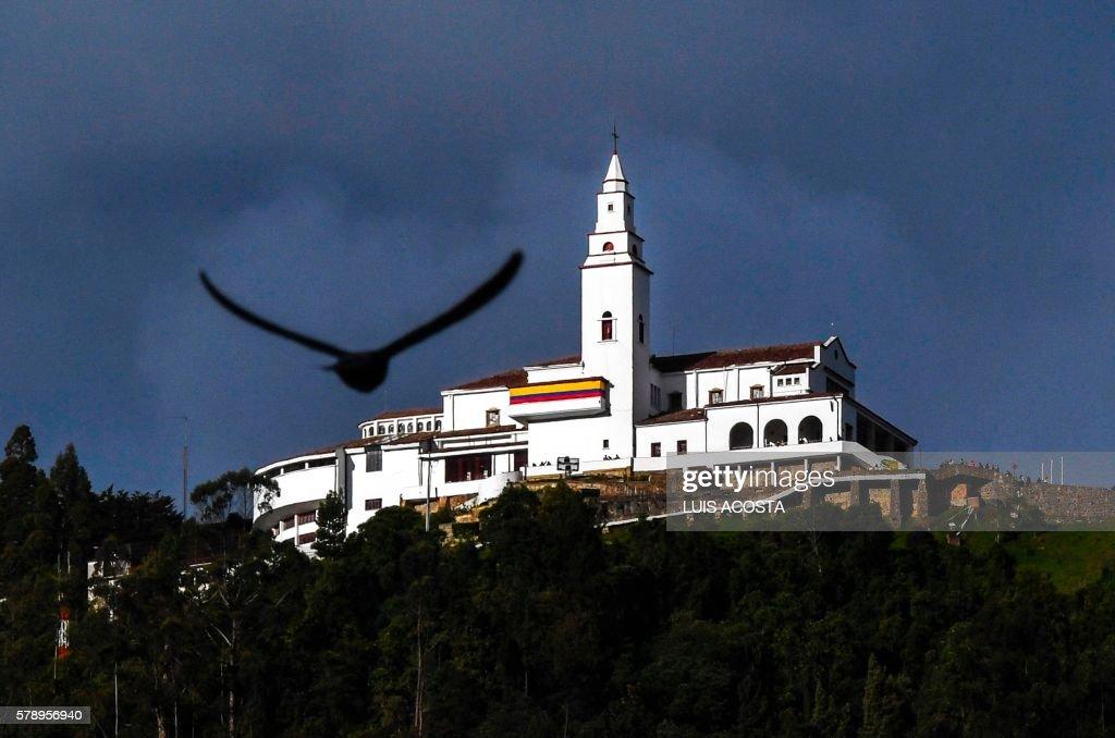 A pigeon flies next to Monserrat Mountain in Bogota on July 22 2016. / AFP PHOTO / Luis Acosta