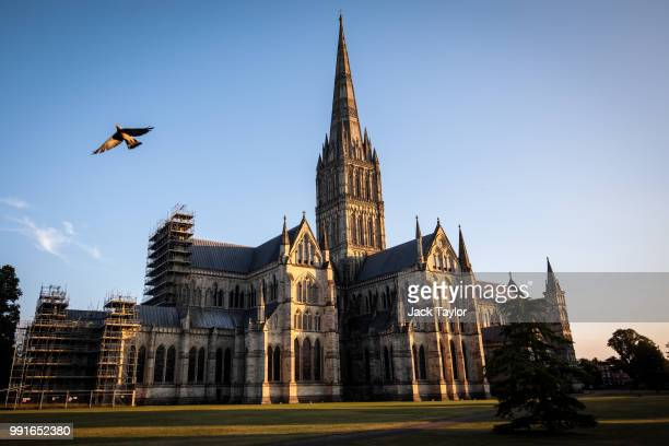 A pigeon flies past Salisbury Cathedral as the sun sets on July 4 2018 in Salisbury England A man and woman in their 40s are in a critical condition...