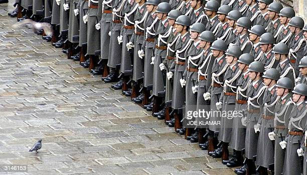 A pigeon looks for some food in front of the soldiers of the Austrian guard of honour who were lined up near Stefan's Dome Catholic Church during the...