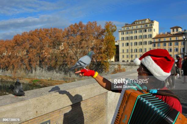 A pigeon perches on a street musician's hand as he takes a break from playing the accordion on the Ponte Sisto bridge over in the River Tiber on a...