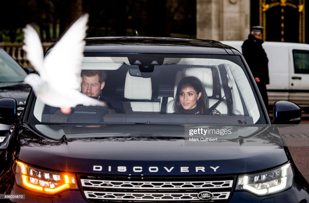 A pigeon photobombs Prince Harry and Meghan Markle as they attend a Christmas lunch for the extended Royal Family at Buckingham Palace on December 20, 2017 in London, England.