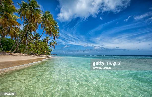 pigeon point beach - trinidad and tobago stock pictures, royalty-free photos & images