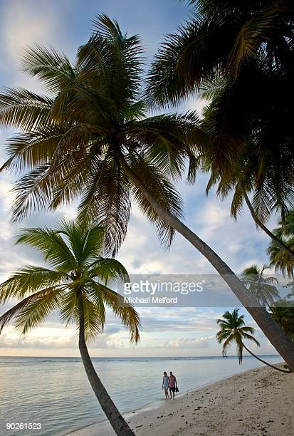 a couple strolling along the shoreline. - tobago stock pictures, royalty-free photos & images
